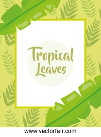 tropical leaves banner botanical jungle template