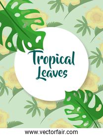 tropical leaves label template monstera palm