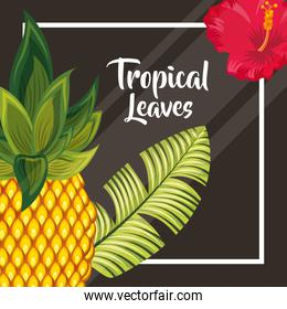 tropical leaves nature