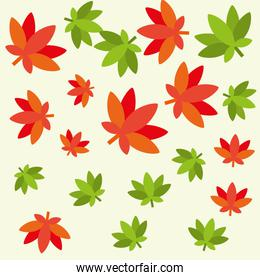 cannabis leaves plant hippie style pattern