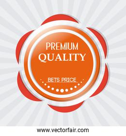 Best offer and quality design