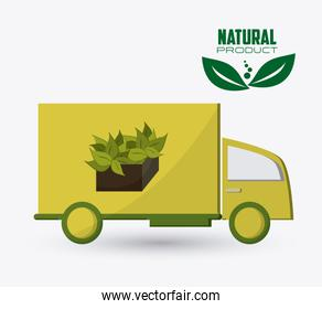 Eco and natural design