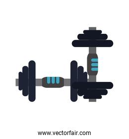 weight lifitng dumbbells icon image