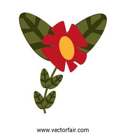 flower with plant leaves icon image