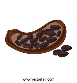 open cocoa fruit and beans icon image
