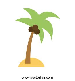 island with palm tree icon image
