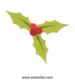 holly plant christmas related icon image
