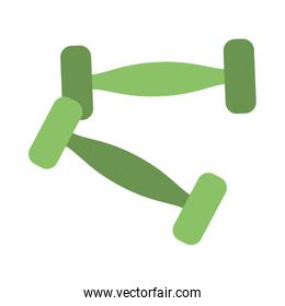 Dumbbells weigths isolated