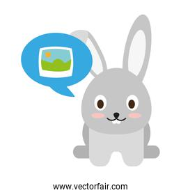 Cute bunny with picture on speech bubble