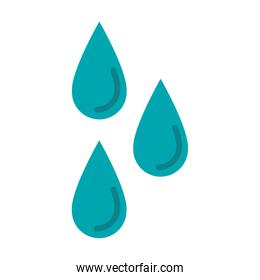 Water drops isolated