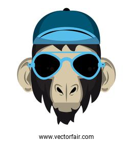 Cool hipster monkey