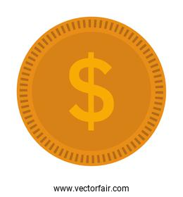 Coin money isolated