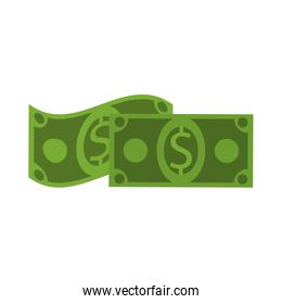 Money billets isolated
