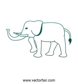 Elephant cute animal in blue lines