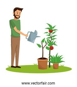 Man and garden cartoon