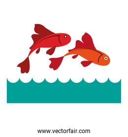 Fishes in the sea