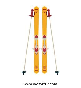 Ski board and sticks equipment