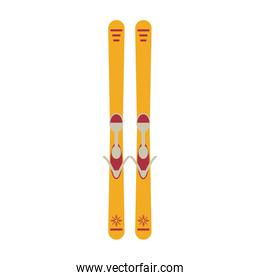 Ski boards equipment