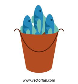 Fishes in bucket
