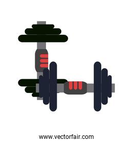 Gym and fitness elements