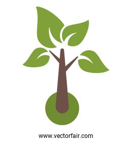 Tree with leaves eco symbol