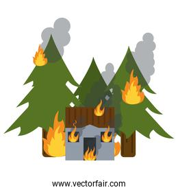 house and forest in fire