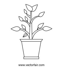 Plant in pot cartoon black and white