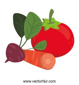 Tomato and carrot with radish