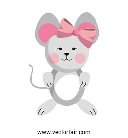 Mouse baby animal