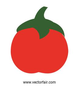 tomato icon cartoon vegetable and fruit vector illustration