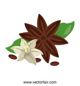 Flowers nature drawing isolated