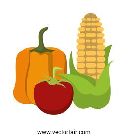 Vegetables fresh food collection cartoon