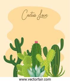 Cactus love card with succulents