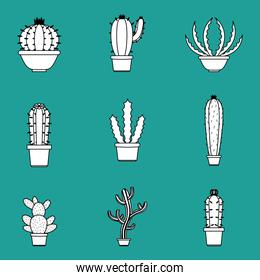Cactus succulents pots set of icons