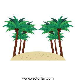 Beach with sand and tree palms scenery cartoons isolated