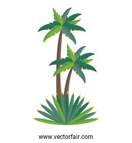 Beach palms trees with leaves cartoon