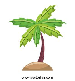 Palm tree in sand cartoon isolated