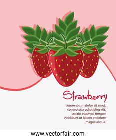 Strawberry fruit and wave design