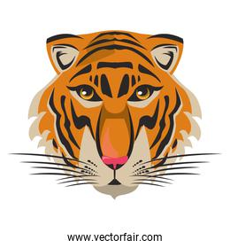 bengal tiger face icon cartoon