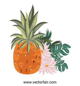 delicious fresh citrus pineapple cartoon