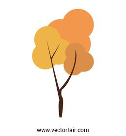 Autumn season tree nature cartoon isolated