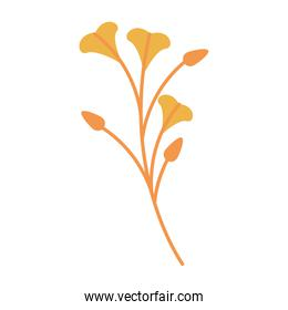 Autumn season leaves bouquet cartoon