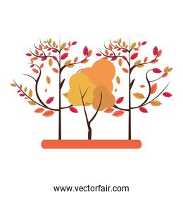 Autumn season trees and leaves nature cartoon