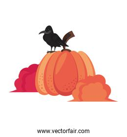 Wild animals and elements thanksgiving day and autumn season