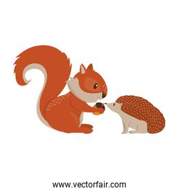 Squirrel and porcupine with nut cartoon