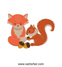 Cute fox and squirrel with nuts cartoons