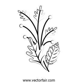 Autumn season leaves bouquet cartoon in black and white