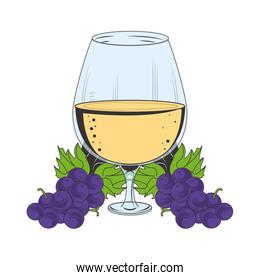 wine glass and bunch of grapes design