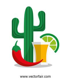Tequila of Mexican culture design