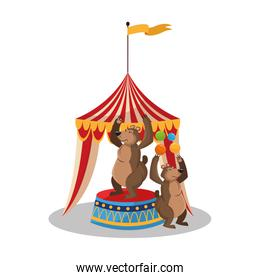 Tent and bear of circus and carnival design